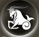 Meaning of the Zodiac Sign of Capricorn